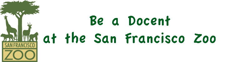 Be a Docent at the San Francisco Zoo